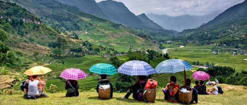 Many travelers come back Sapa to enjoy the peace and wonderful lanscape here