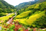 5 The village that visitors enthralled when traveling Sapa